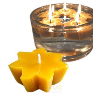 Sveča iz čebeljega voska plavajoča vetrnica