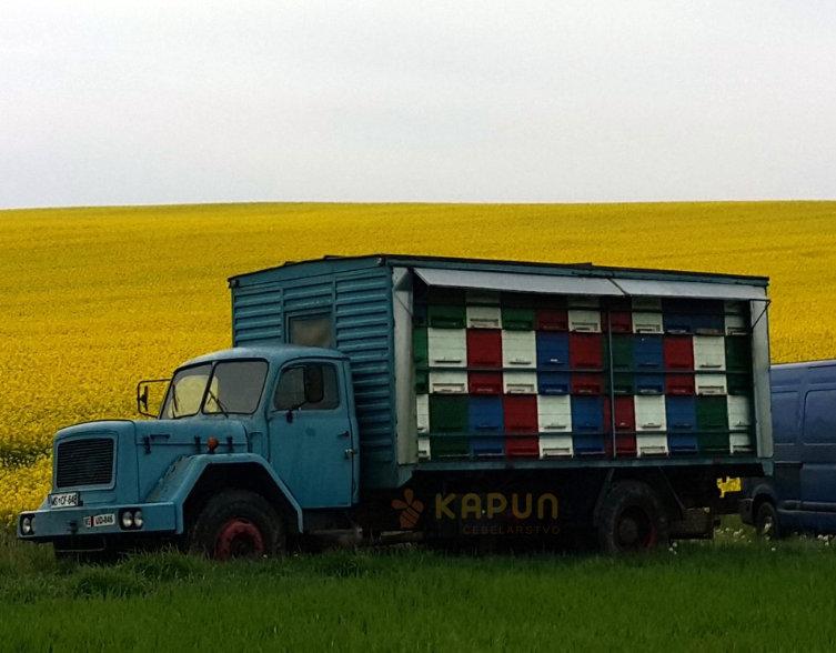 Prevozni čebelnjak